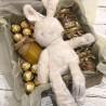 Подарунковий набір з зайцем №173 Подарунки WOW BOX - 2
